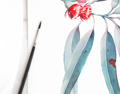 eucalyptus branch, watercolor