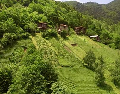 Lipton - Bi' Çay Daha Türkiye