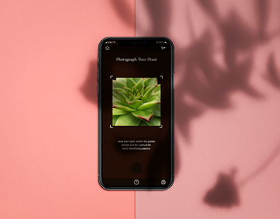 Seedling App Design