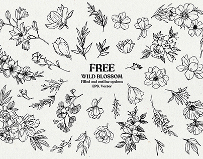 FREE Wild Blossom - Vector line art