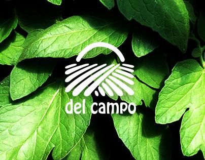 Del Campo Website