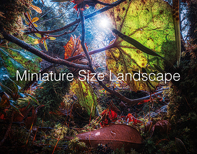 Miniature Size Landscape - Final Season-