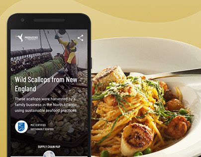 StoryBird: Storytelling and Transparency Pilot App