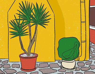Burano Illustrations