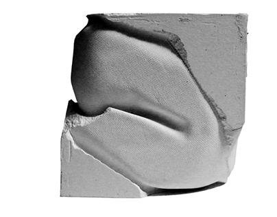 D6 SP '15: Plaster Cast Analysis