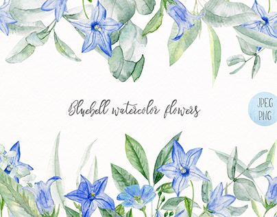 Bluebell watercolor flowers