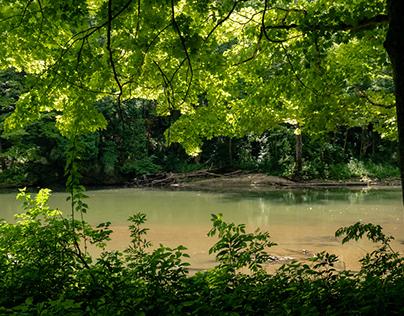 Clifton Gorge State Nature Preserve, Ohio