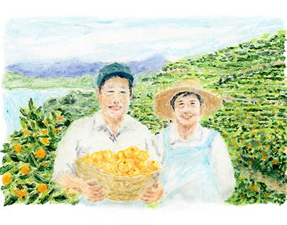 Leaflet of Nishiuwa mandarins