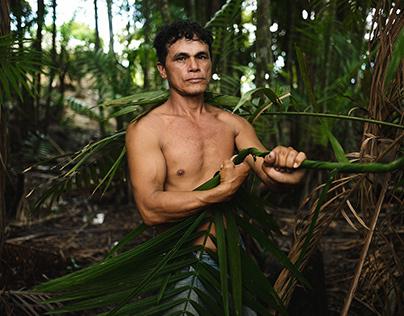 The Raw Gold Of The Amazon: Açaì