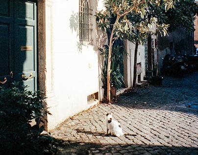 35mm Around Italy