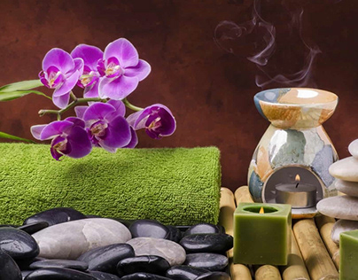 hoc nghe spa