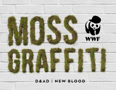 Moss Graffiti | D&AD New Blood