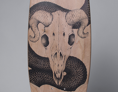 Recycled Skateboard and Illustration - Scales and Skull