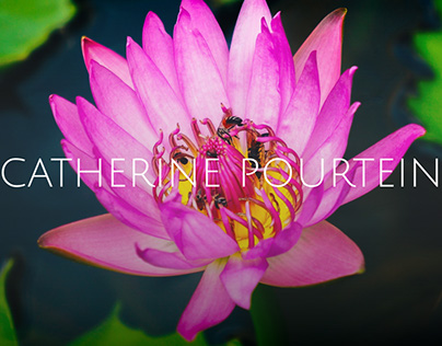 Catherine Pourtein - Website