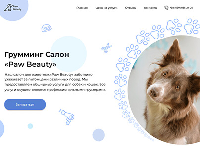 The design of website for the Grooming Salon