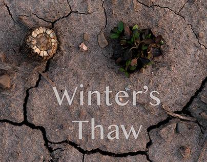 Winter's Thaw