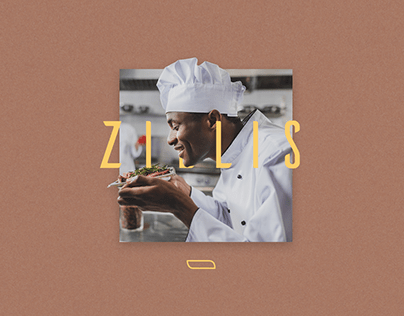 Zillis - Identidade Visual