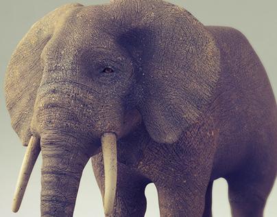 Elephant Modeling Crehana
