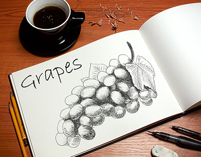 Fruits and vegetables hand-drawing