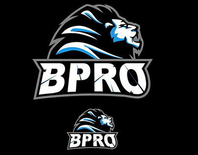 BPRO Logo ReDesign