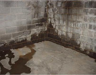 Basement Dehumidifier for Damp Basement