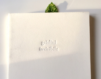Invisible gardens | Interstitia