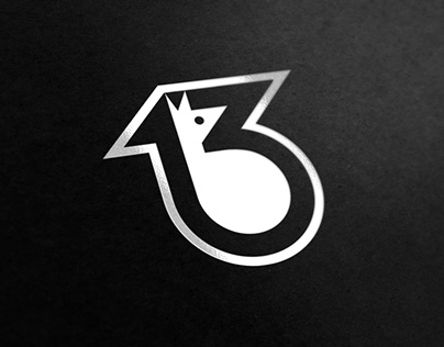13 degrees logo for sportswear brand