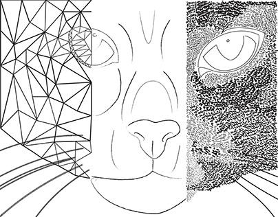 Illustrator Designs