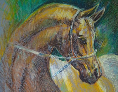 Horsey - Oil Pastels