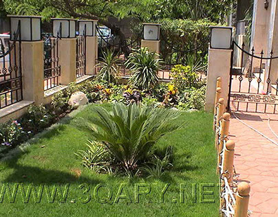 The Best Studio 1 BR Apt in Maadi Degla Cairo / Garden