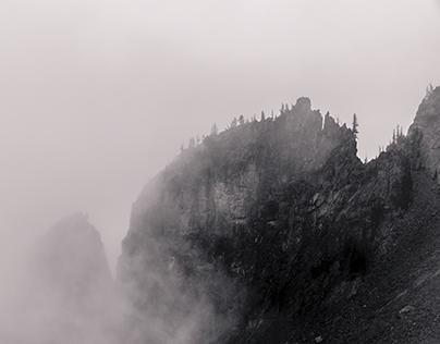 Foggy Alpine Landscapes No. 1, Mount Rainier NP, WA