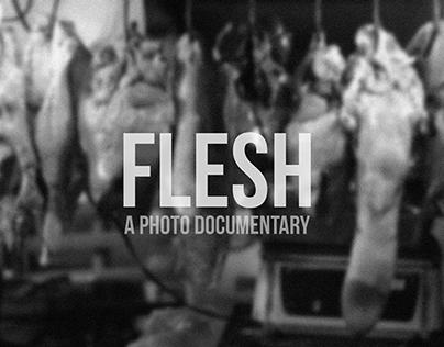 Flesh: A Photo Documentary