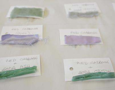 Natural Food Dye Workshop