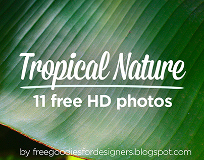 FREE 11 TROPICAL NATURE PHOTOS