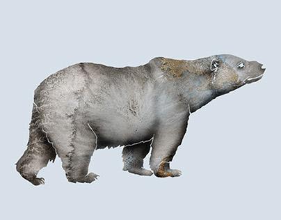 Nordic Animals