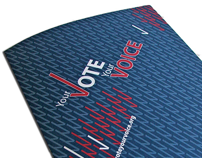 Your Vote Your Voice brochure