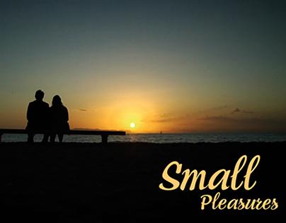 Small Pleasures (2008)