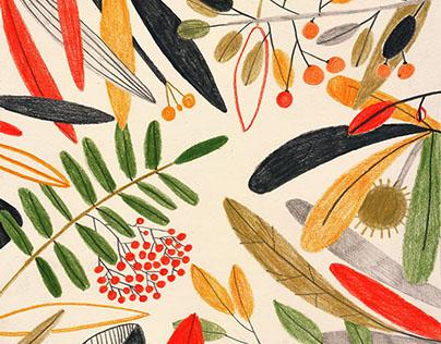 cover illustration for Menażeria magazine / 10.2014