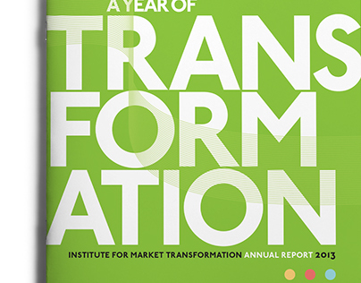 IMT Annual Report