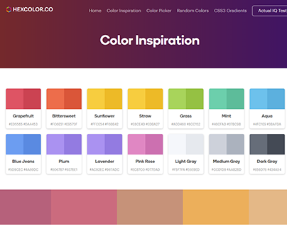 Color Inspirations and Ideas