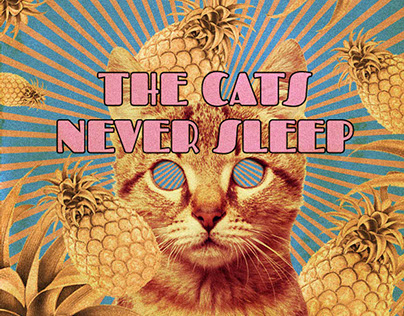 THE CATS NEVER SLEEP EP Cover