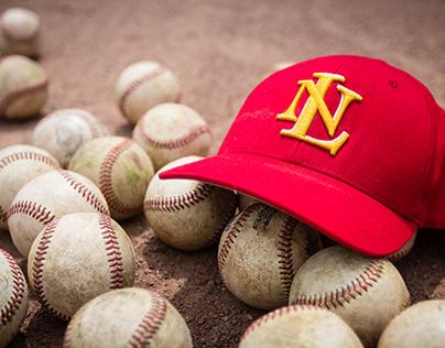 NHS: Baseball 2016-17
