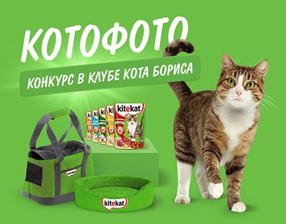 Contest on kitekat website