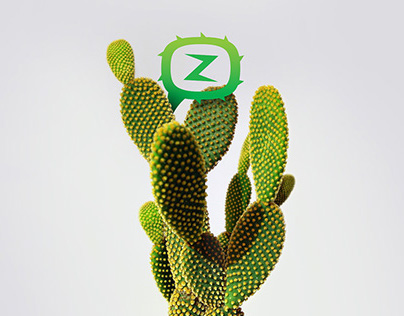 Cactuz promo-website design