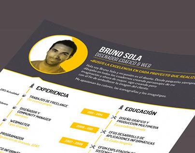 Bruno Sola - Curriculum vitae