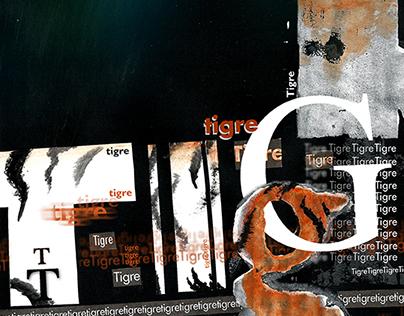 Composición Tipográfica Basada en Imagen