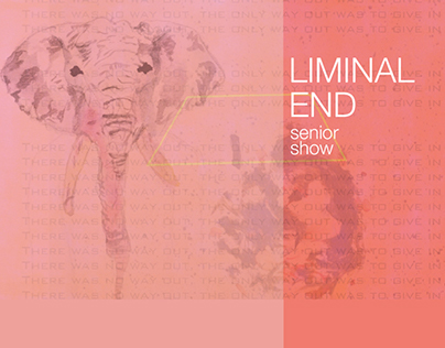 Dittmar Gallery Senior Show 2012: Liminal End