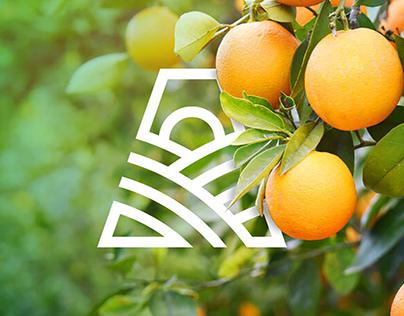 Branding Agrovale - Agropecuária do Vale do Paraíba