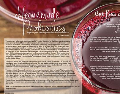 Homemade Probiotics