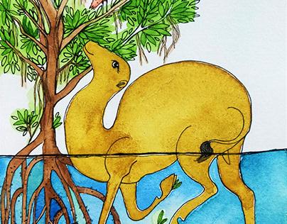 The Kharai Mangroves